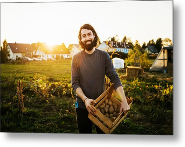 Portrait Of Urban Farmer Holding Crate Of Potatoes Metal Print by Tom Werner