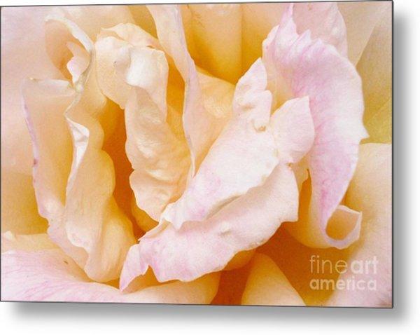 Rose Au Naturale Metal Print