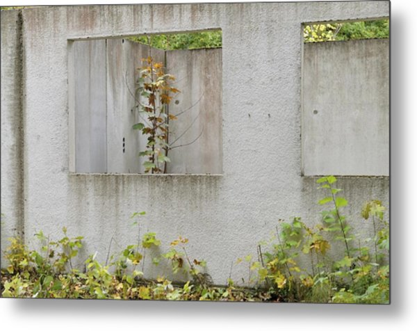 Ruins Of A Building, Prefabricated Concrete Unit Of A House, Recaptured By Nature, Mecklenburg-western Pomerania, Germany Metal Print by Frederik