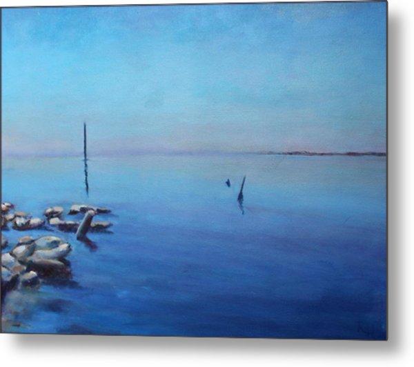 Salton Sea Metal Print