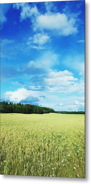 Scenic View Of Field Against Cloudy Sky Metal Print by Jonas Rask / EyeEm