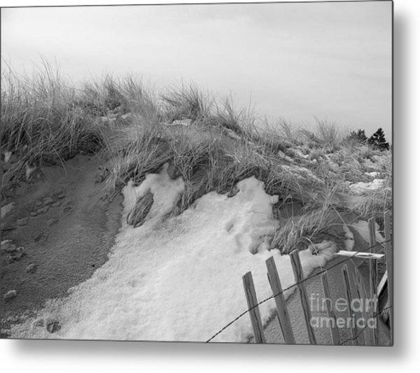 Snow Covered Sand Dunes Metal Print