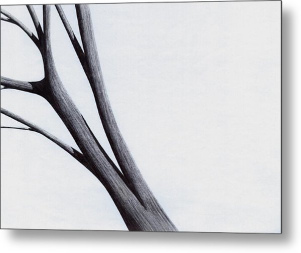 Strong Branches Between Light Metal Print
