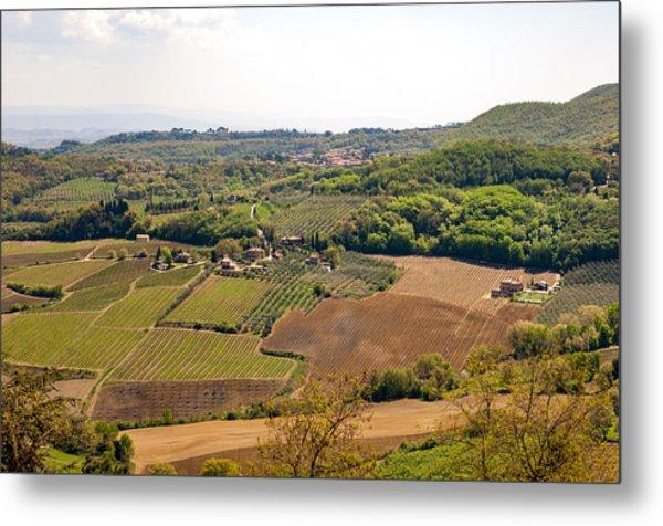 Wine Fields In Tuscany Metal Print by Jakob Montrasio