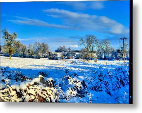 Winters View Metal Print by Dave Woodbridge