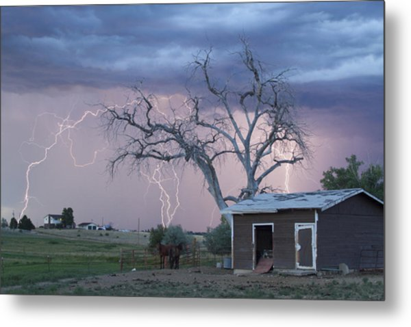 Country Horses Lightning Storm Ne Boulder County Co 76 Metal Print