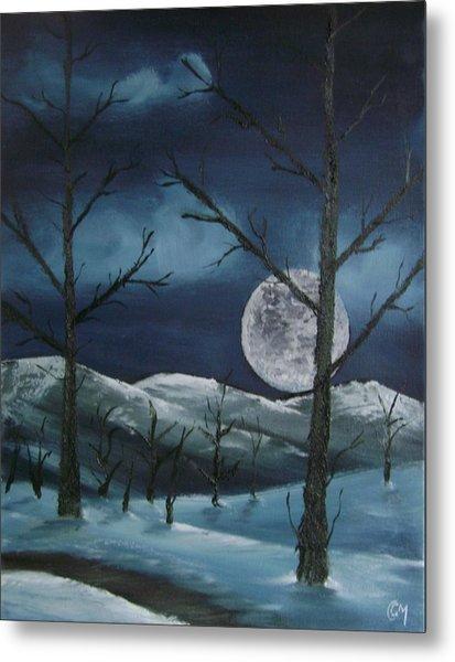 Winter Night Metal Print