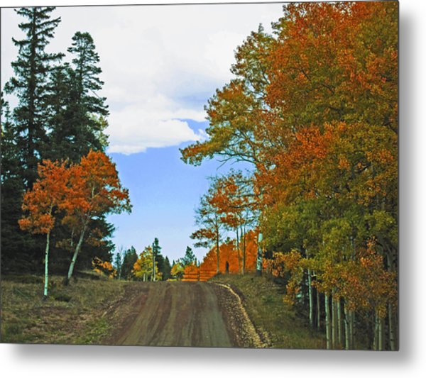 Fall Colorado Series Metal Print