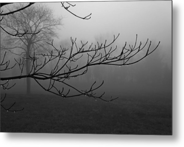 And Not A Word Was Spoken Metal Print