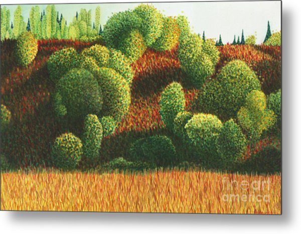 Bits Of Color In Driftwood Canyon Metal Print