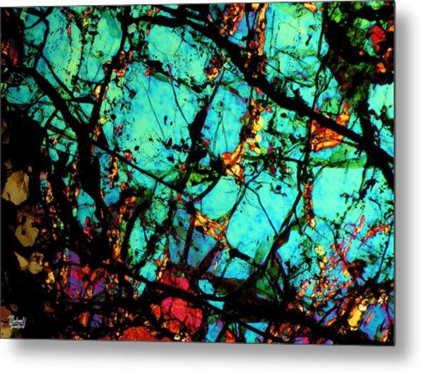 Bondac Meteorite Nwa 657 Metal Print