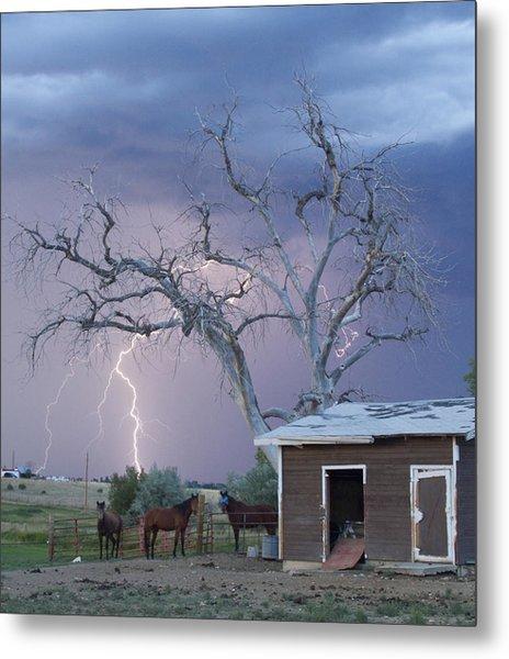 Country Horses Lightning Storm Ne Boulder County Co 66v Metal Print