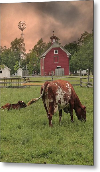 Dairy Farm Metal Print