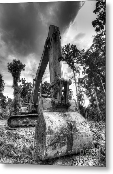 Digging The Rainforest Metal Print