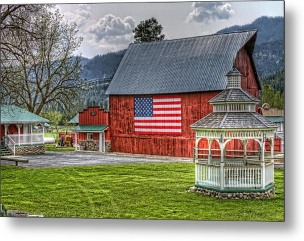 Feeling Patriotic Metal Print
