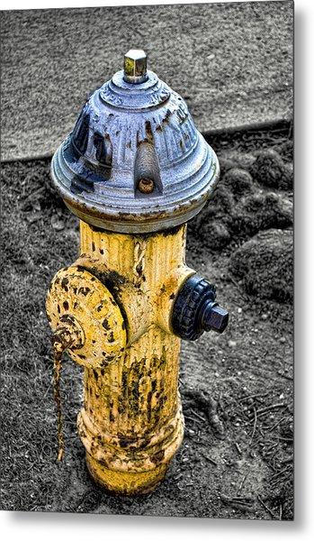 Fire Hydrant Metal Print by Bennie Reynolds