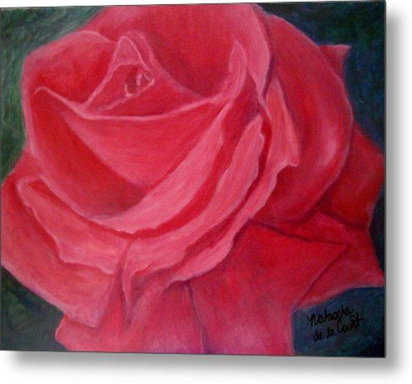 Fuschia Rose Metal Print