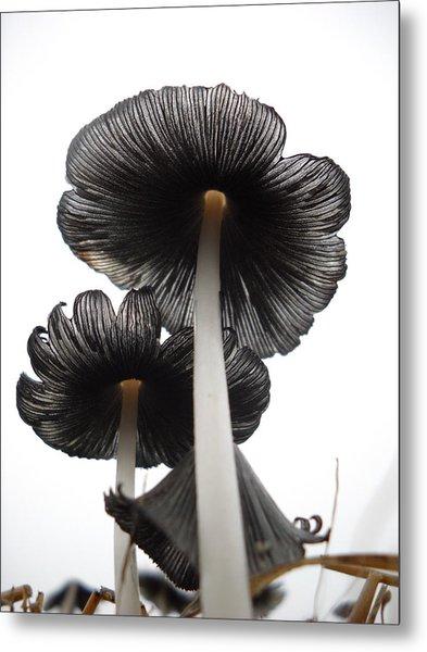 Giant Mushrooms In The Sky Metal Print