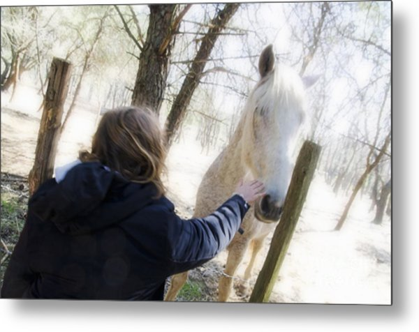 Girl Stroking Camargue Horse At Fence Metal Print by Sami Sarkis