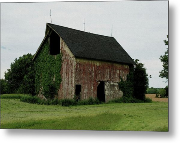 Growing Old Metal Print