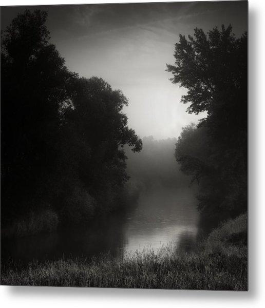 In Floodplain Forest Metal Print by Jaromir Hron