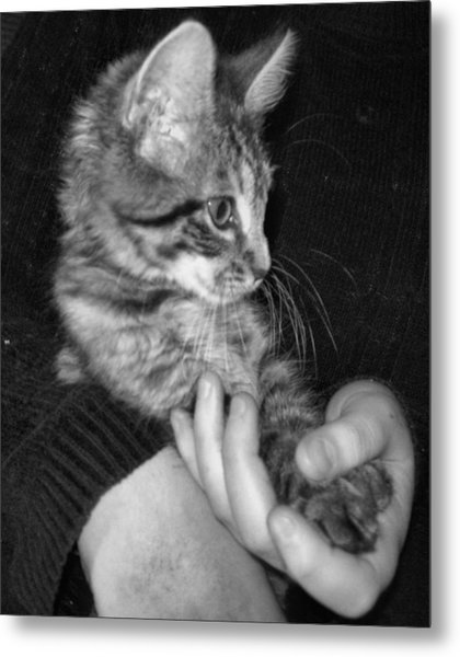 In Good Hands Metal Print by Juliana  Blessington