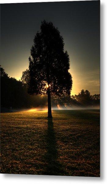 Inspirational Tree Metal Print