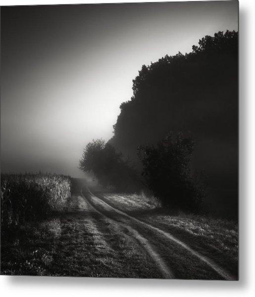 Journey Into The Unknown - Cesta Do Neznama Metal Print by Jaromir Hron