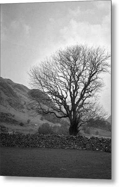 Lake District England Metal Print