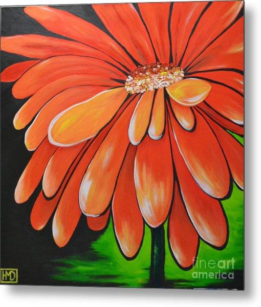 Mandarin Orange Metal Print by Holly Donohoe