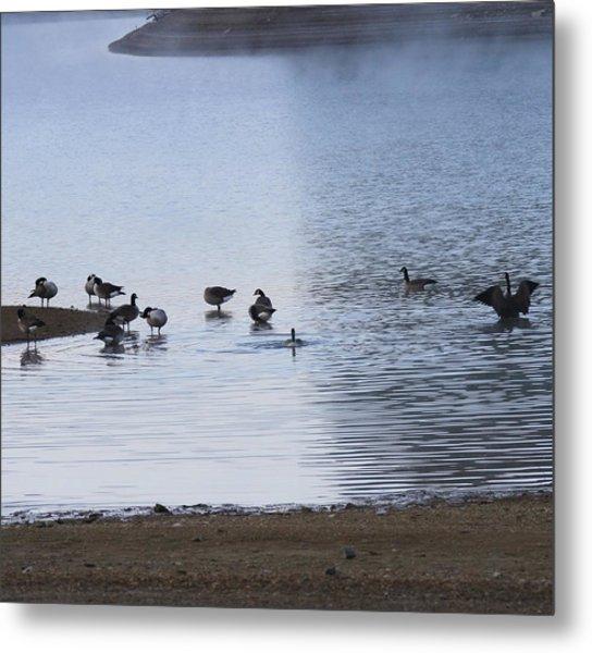 Morning On The Lake Metal Print