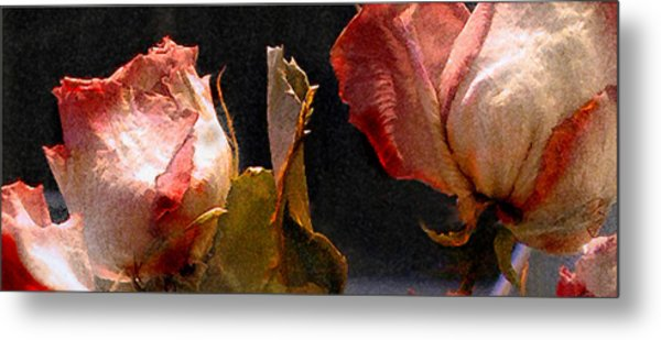 Mother's Roses Metal Print