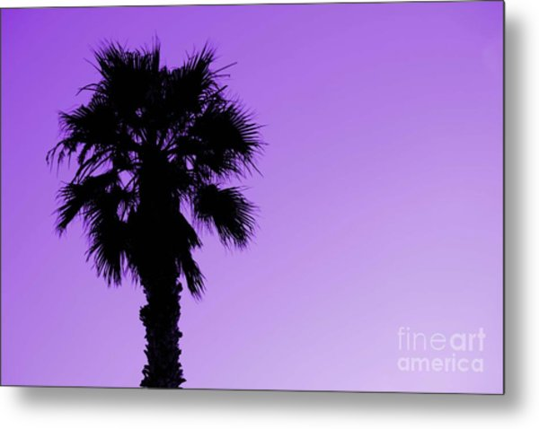 Palm With Violet Sky Metal Print