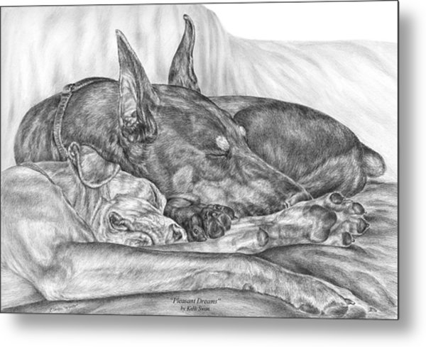 Pleasant Dreams - Doberman Pinscher Dog Art Print Metal Print