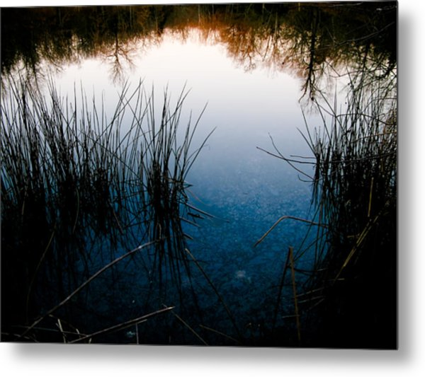 Pond Reflections Metal Print by Susan Adams
