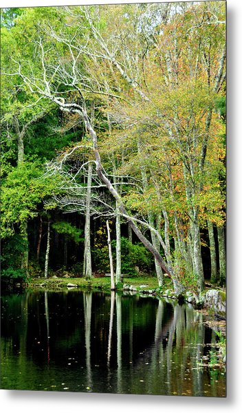 Reflections On A Fall Day Metal Print