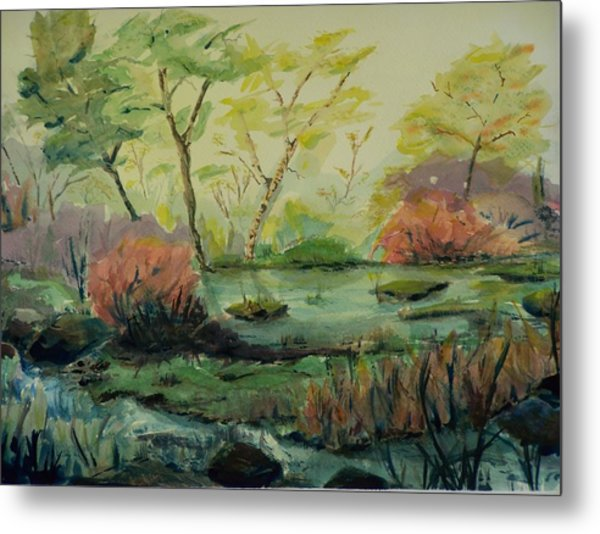 Roadside Pond Metal Print