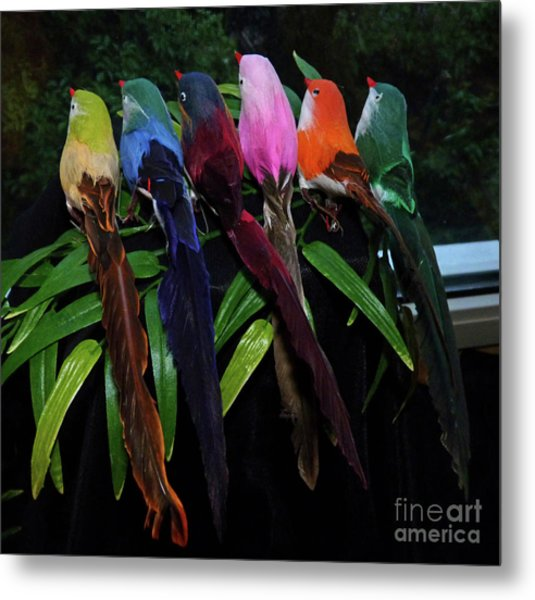 Six Long-tailed Colorful Birds On A Bamboo Leaf Metal Print