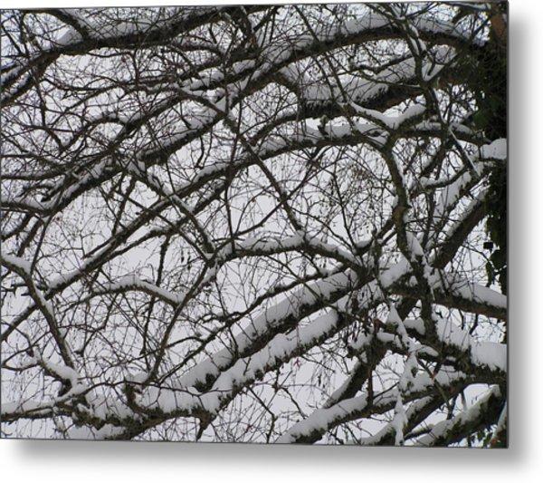 Snow Against A Grey Sky Metal Print