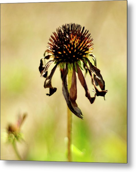 'stand Strong' Metal Print
