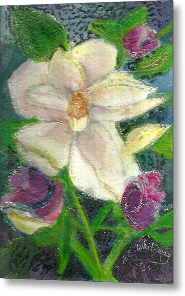 White Happy Flower Metal Print by Anne-Elizabeth Whiteway