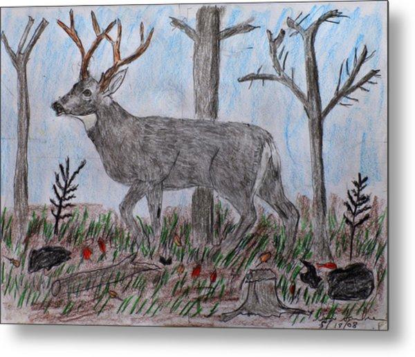 Whitetail Deer In A Meadow Metal Print