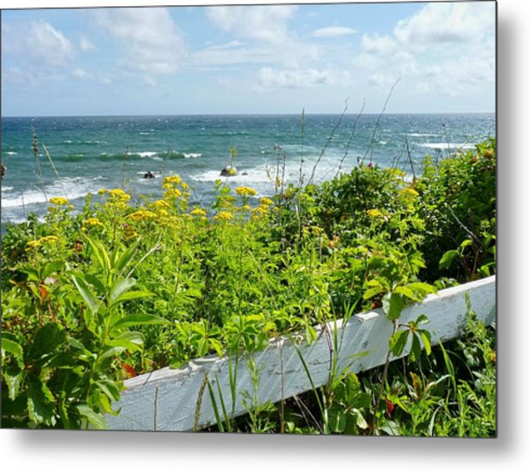 Manomet Point Metal Print
