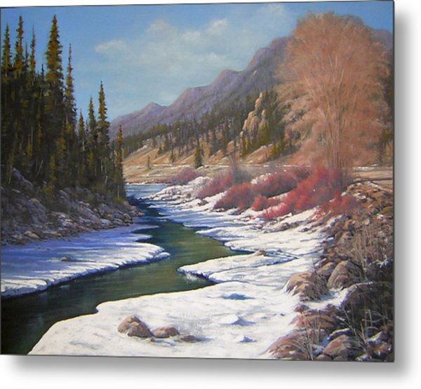 060328-2822    Remnants Of Winter   Metal Print by Kenneth Shanika