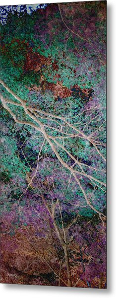 A Forest Of Magic Metal Print