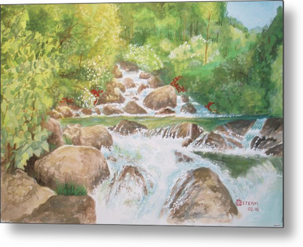 Bishop Creek South Fork Metal Print by Charles Hetenyi
