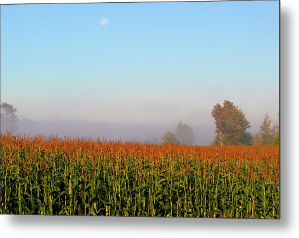 Cornfield Moonset Metal Print