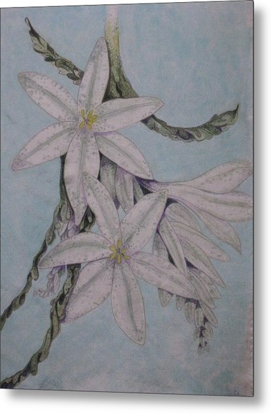 Desert Lillie Metal Print by David Kelly