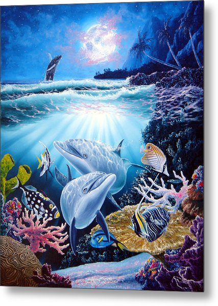 Dolphin Dream Metal Print by Daniel Bergren