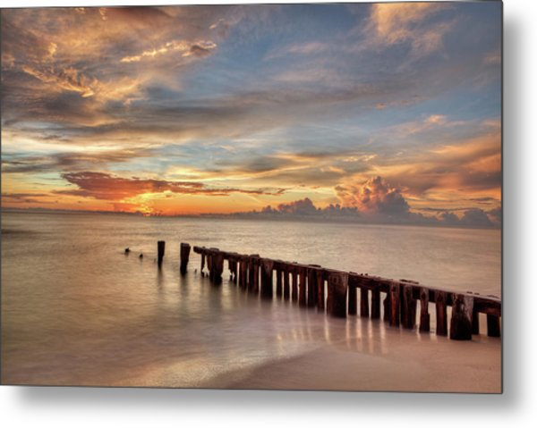Evening Delight Metal Print